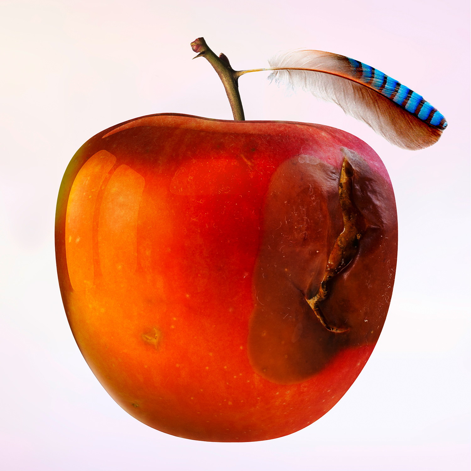 Red apple fruit nutrition ripe food antioxidant fresh exotic icon